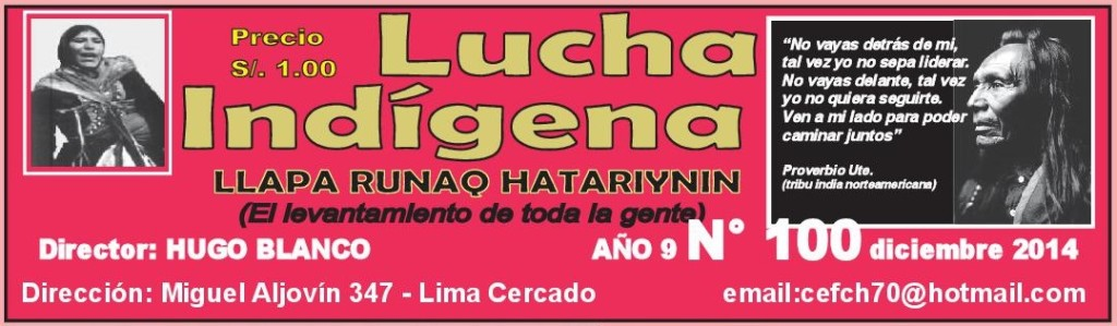 Lucha-Indígena-100